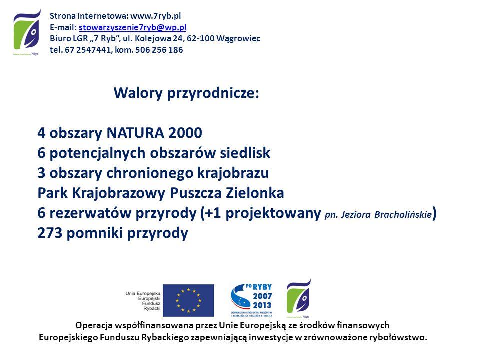 Walory przyrodnicze: 4 obszary NATURA 2000 6 potencjalnych obszarów siedlisk 3 obszary chronionego krajobrazu Park Krajobrazowy Puszcza Zielonka 6 rez