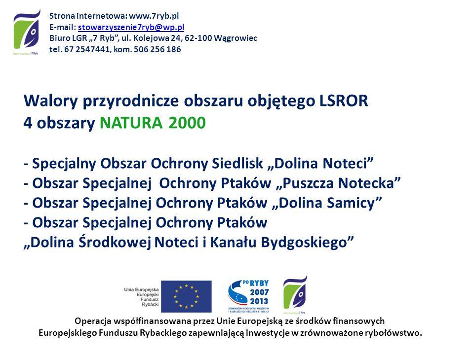 Walory przyrodnicze obszaru objętego LSROR 4 obszary NATURA 2000 - Specjalny Obszar Ochrony Siedlisk Dolina Noteci - Obszar Specjalnej Ochrony Ptaków