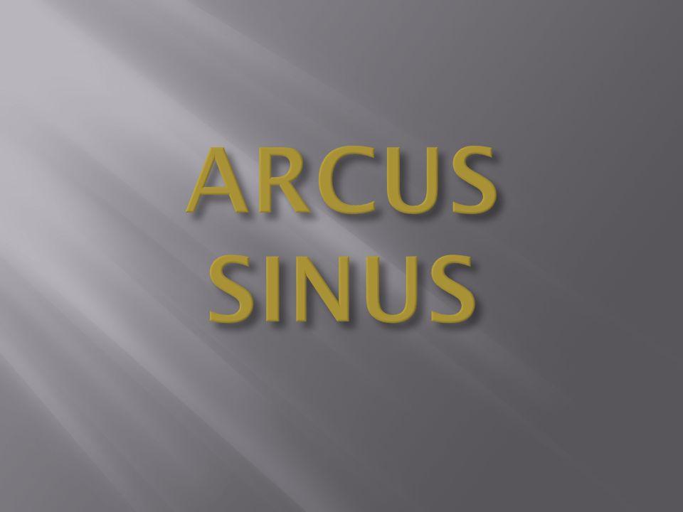 Arcus sinus jest funkcją odwrotną do funkcji sinus rozpatrywanej na przedziale (- π /2; π /2).