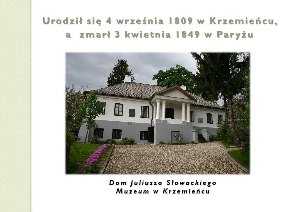 Pochodził z bardzo inteligentnej rodziny: ojciec był profesorem w Liceum Krzemieńskim i na Uniwersytecie w Wilnie; Młody Słowacki zachwycał się twórczością Adama Mickiewicza, którego znał osobiście Salomea Słowacka matka była osobą o wysokiej kulturze literackiej.