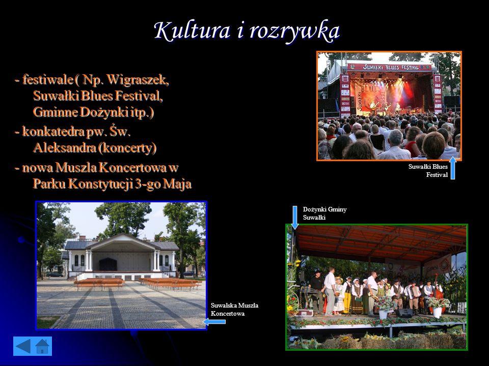 Kultura i rozrywka - festiwale ( Np. Wigraszek, Suwałki Blues Festival, Gminne Dożynki itp.) - konkatedra pw. Św. Aleksandra (koncerty) - nowa Muszla