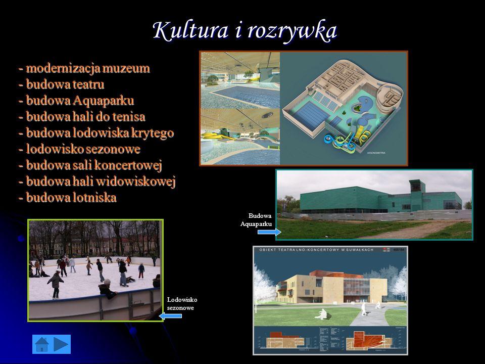 Kultura i rozrywka - modernizacja muzeum - budowa teatru - budowa Aquaparku - budowa hali do tenisa - budowa lodowiska krytego - lodowisko sezonowe -