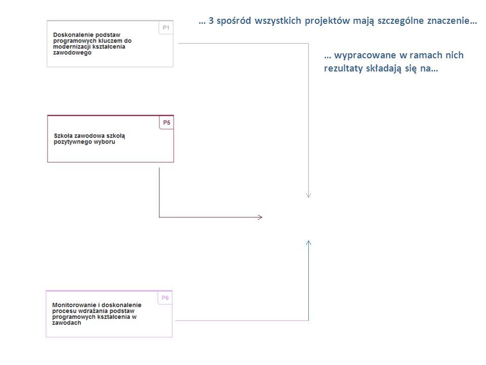 Projekty systemowe KOWEZiU Okres realizacji: I 2013-XII 2013 W ramach projektu prowadzone są działania mające na celu wsparcie gimnazjów i placówek ks