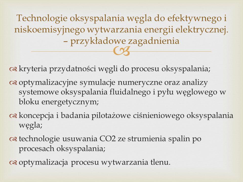 kryteria przydatności węgli do procesu oksyspalania; optymalizacyjne symulacje numeryczne oraz analizy systemowe oksyspalania fluidalnego i pyłu węglowego w bloku energetycznym; koncepcja i badania pilotażowe ciśnieniowego oksyspalania węgla; technologie usuwania CO2 ze strumienia spalin po procesach oksyspalania; optymalizacja procesu wytwarzania tlenu.