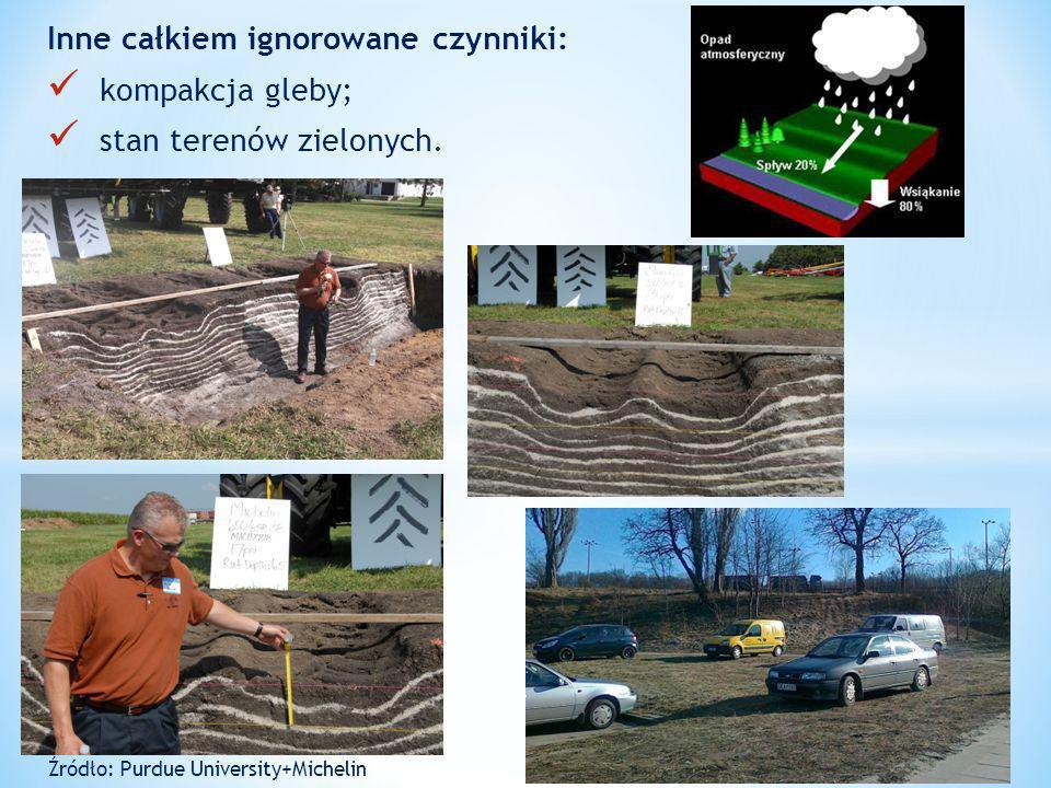 Inne całkiem ignorowane czynniki: Mgliste pojęcie zielonego dachu