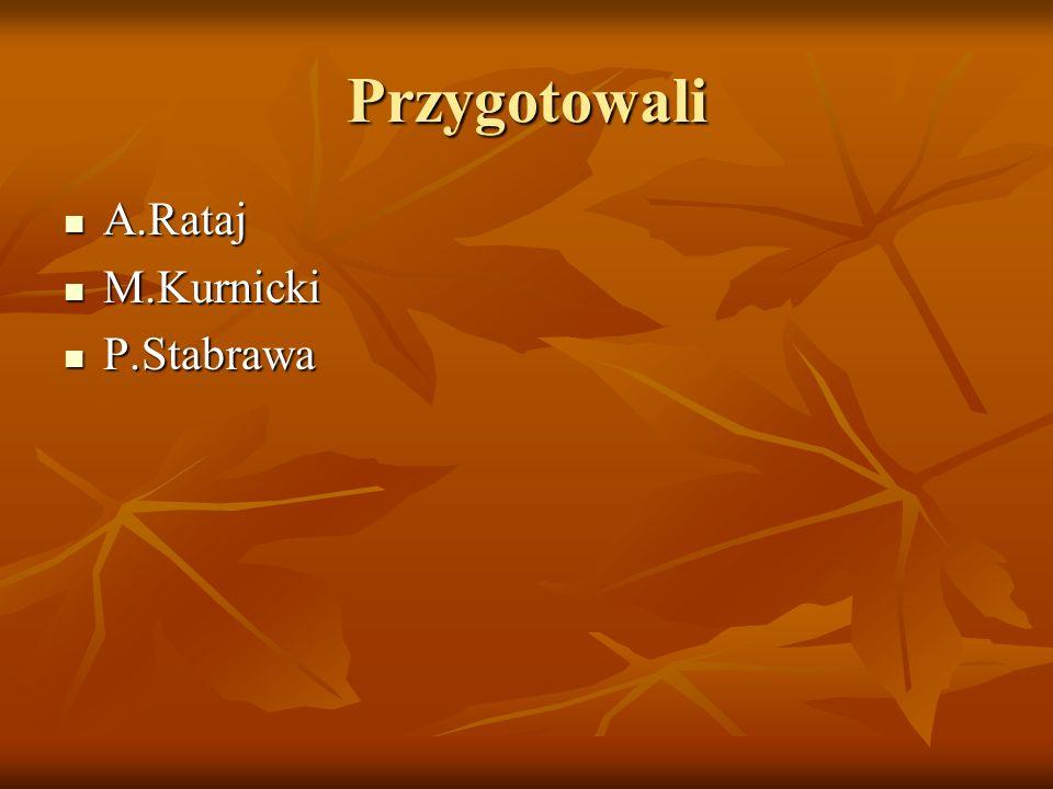 Przygotowali A.Rataj A.Rataj M.Kurnicki M.Kurnicki P.Stabrawa P.Stabrawa