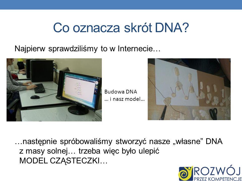 Co oznacza skrót DNA? Najpierw sprawdziliśmy to w Internecie… …następnie spróbowaliśmy stworzyć nasze własne DNA z masy solnej… trzeba więc było ulepi