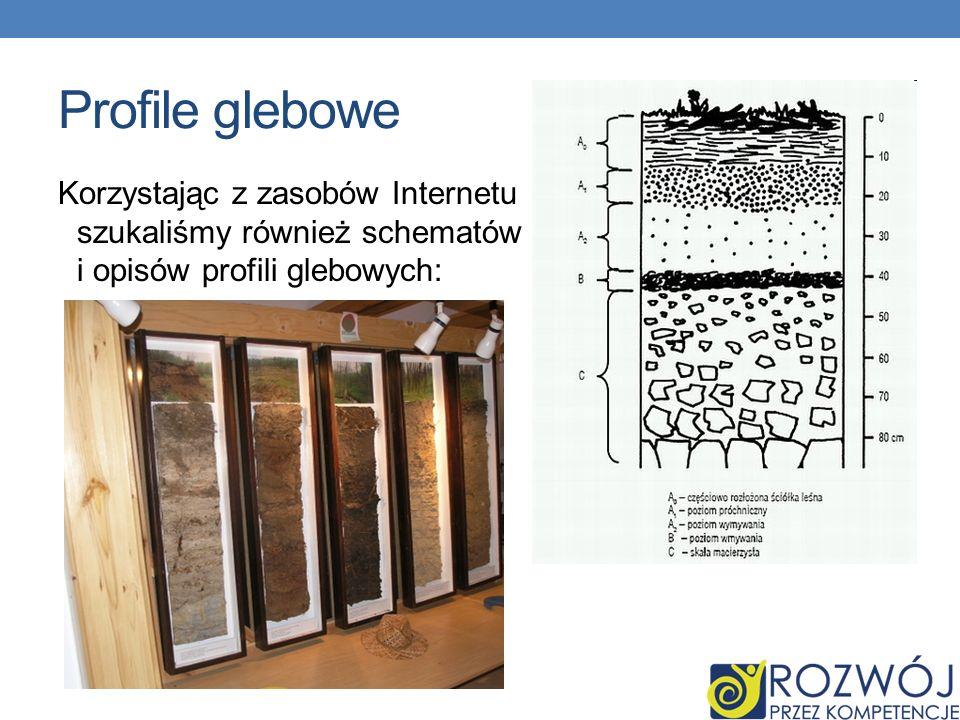 Profile glebowe Korzystając z zasobów Internetu szukaliśmy również schematów i opisów profili glebowych: