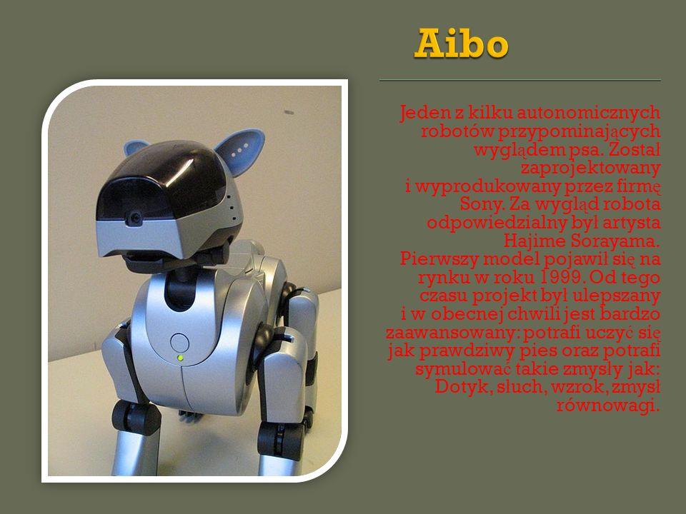 Jeden z kilku autonomicznych robotów przypominaj ą cych wygl ą dem psa. Zosta ł zaprojektowany i wyprodukowany przez firm ę Sony. Za wygl ą d robota o