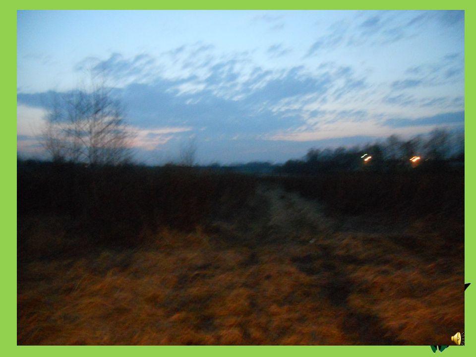 Dzień piąty. 17.03.2012 Fifth day. Godzina: 10.30 Temperatura [ o C]: 15 Ciśnienie [hPa]: 1007,25 Stan pogody: słonecznie Wiatr [km/s]: 19 Opady: ----