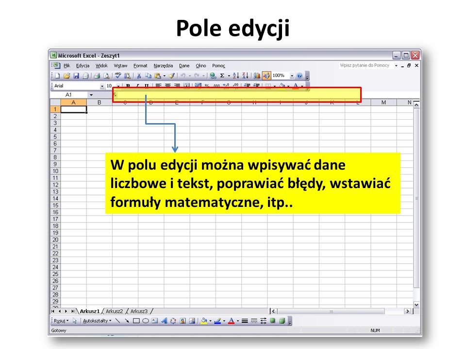 Pole edycji W polu edycji można wpisywać dane liczbowe i tekst, poprawiać błędy, wstawiać formuły matematyczne, itp..
