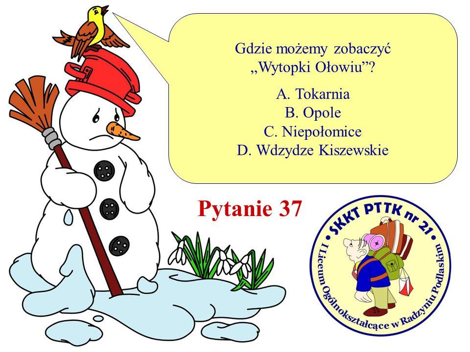 Gdzie możemy zobaczyć Wytopki Ołowiu? A. Tokarnia B. Opole C. Niepołomice D. Wdzydze Kiszewskie Pytanie 37