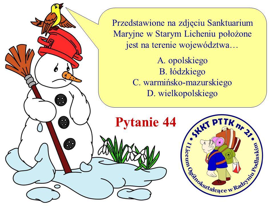 Pytanie 44 Przedstawione na zdjęciu Sanktuarium Maryjne w Starym Licheniu położone jest na terenie województwa… A. opolskiego B. łódzkiego C. warmińsk