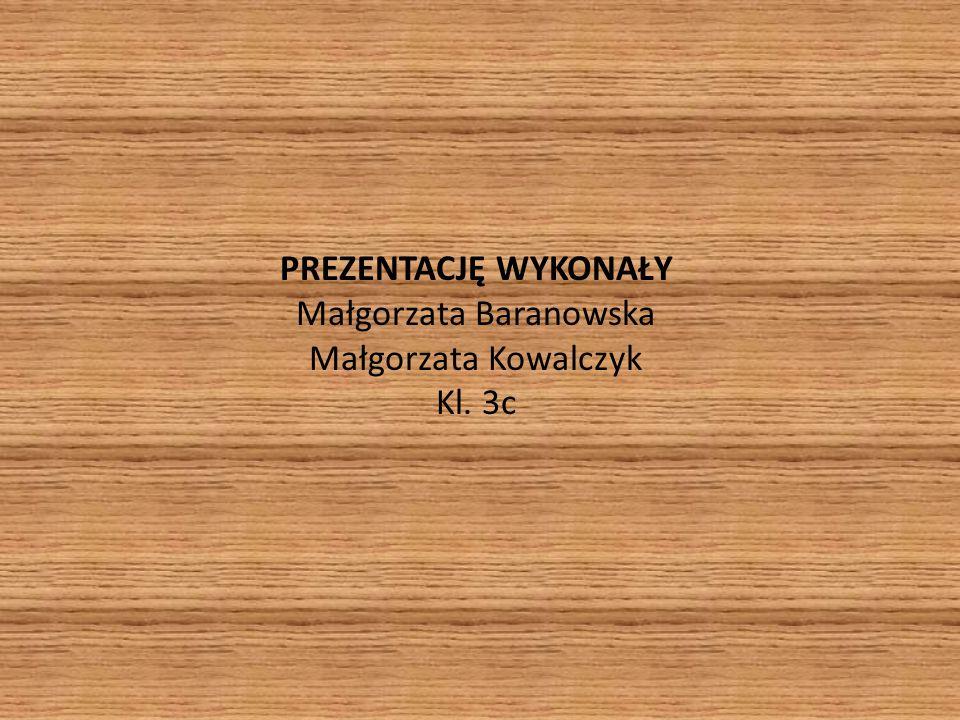 PREZENTACJĘ WYKONAŁY Małgorzata Baranowska Małgorzata Kowalczyk Kl. 3c