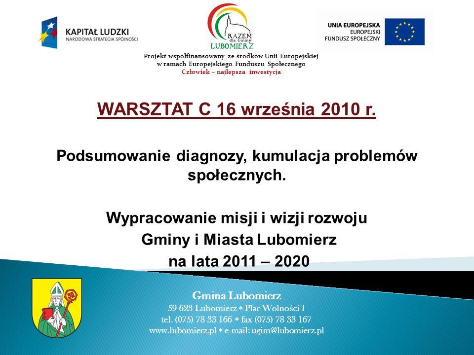 WARSZTAT C 16 września 2010 r. Podsumowanie diagnozy, kumulacja problemów społecznych.