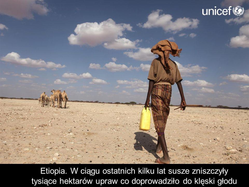 Etiopia. W ciągu ostatnich kilku lat susze zniszczyły tysiące hektarów upraw co doprowadziło do klęski głodu