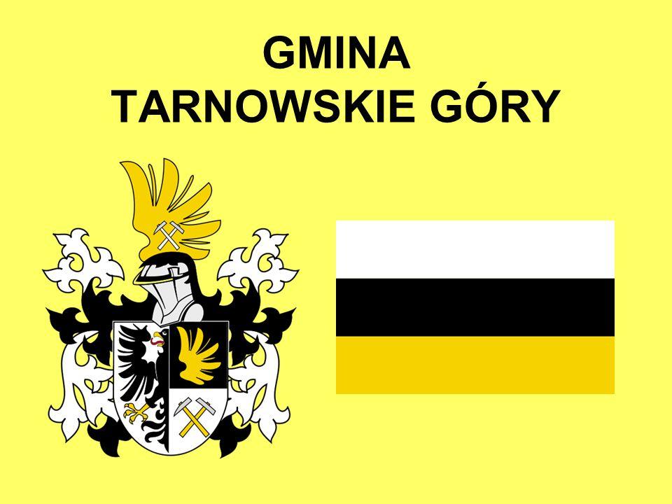 TARNOWSKIE GÓRY Gmina położona jest w południowo-zachodniej Polsce, w województwie śląskim, siedziba powiatu tarnogórskiego.