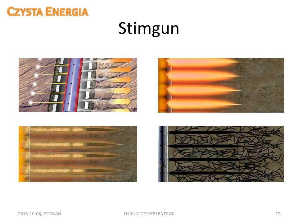 Stimgun 2013-10-08, POZNAŃFORUM CZYSTEJ ENERGII10