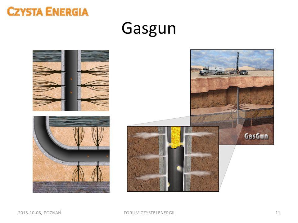 Gasgun 2013-10-08, POZNAŃFORUM CZYSTEJ ENERGII11