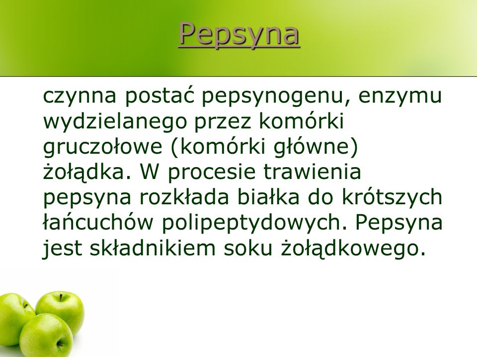 Pepsyna czynna postać pepsynogenu, enzymu wydzielanego przez komórki gruczołowe (komórki główne) żołądka. W procesie trawienia pepsyna rozkłada białka