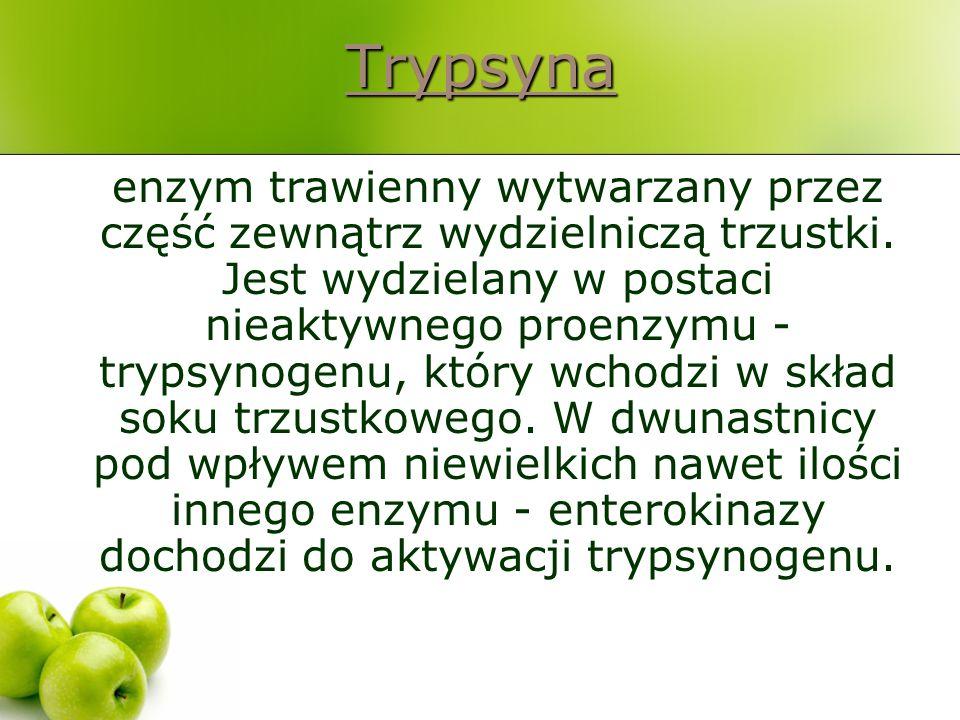 Trypsyna enzym trawienny wytwarzany przez część zewnątrz wydzielniczą trzustki. Jest wydzielany w postaci nieaktywnego proenzymu - trypsynogenu, który