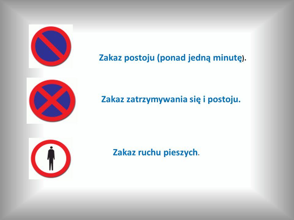 Zakaz postoju (ponad jedną minutę ). Zakaz zatrzymywania się i postoju. Zakaz ruchu pieszych.