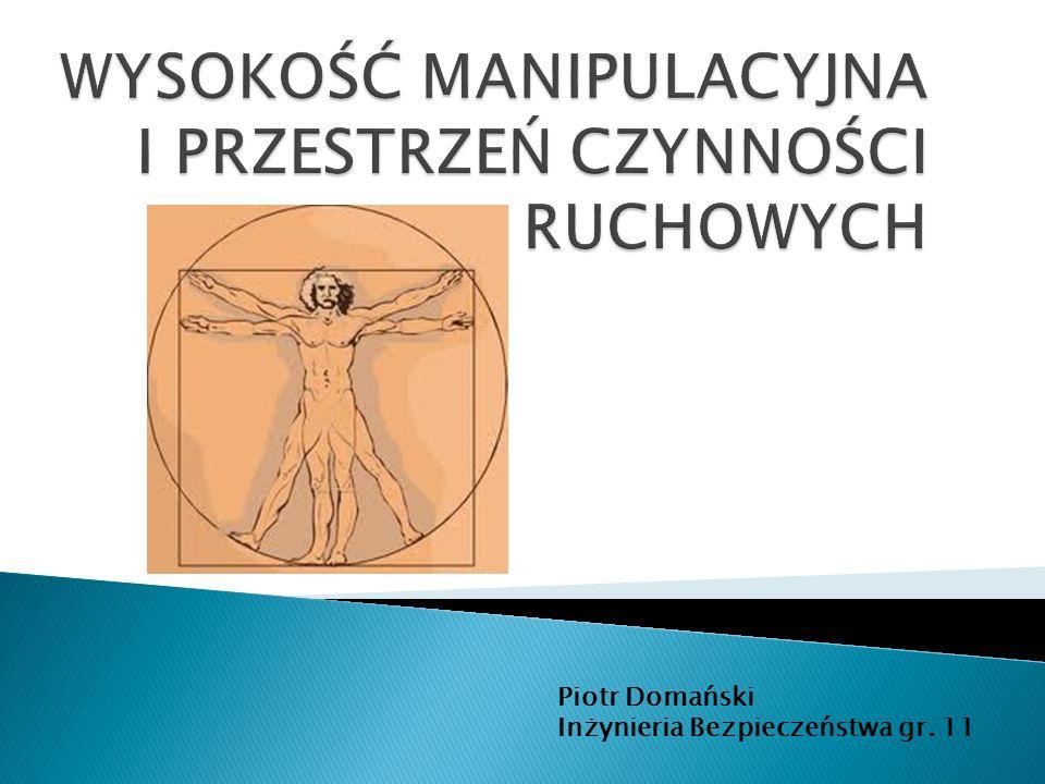 Piotr Domański Inżynieria Bezpieczeństwa gr. 11
