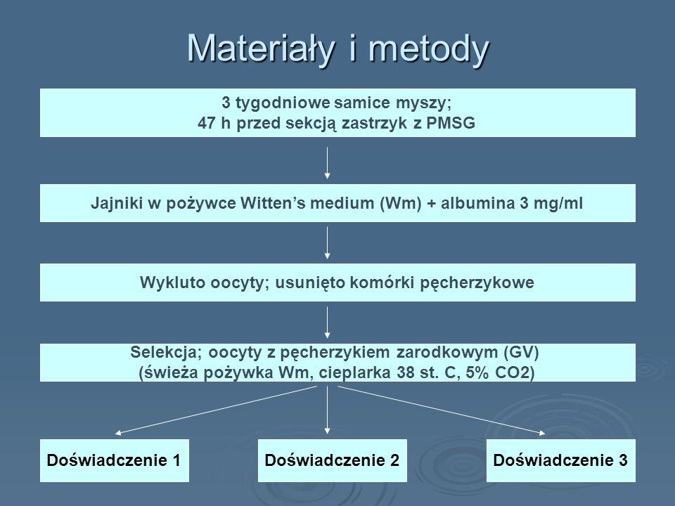 Materiały i metody 3 tygodniowe samice myszy; 47 h przed sekcją zastrzyk z PMSG Jajniki w pożywce Wittens medium (Wm) + albumina 3 mg/ml Wykluto oocyt