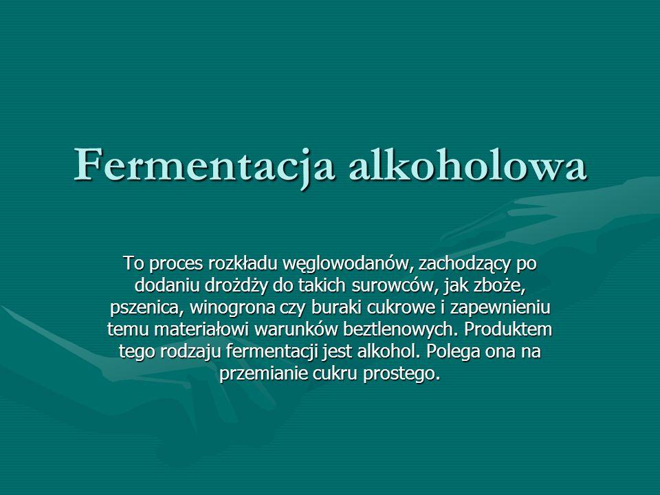Fermentacja alkoholowa To proces rozkładu węglowodanów, zachodzący po dodaniu drożdży do takich surowców, jak zboże, pszenica, winogrona czy buraki cu