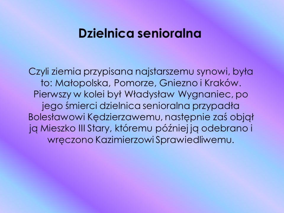 Dzielnica senioralna Czyli ziemia przypisana najstarszemu synowi, była to: Małopolska, Pomorze, Gniezno i Kraków.