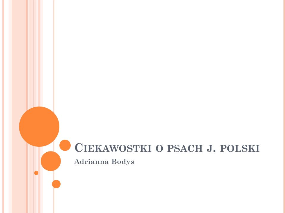 C IEKAWOSTKI O PSACH J. POLSKI Adrianna Bodys