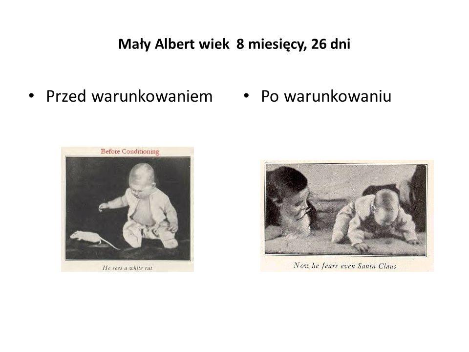Mały Albert wiek 8 miesięcy, 26 dni Przed warunkowaniem Po warunkowaniu