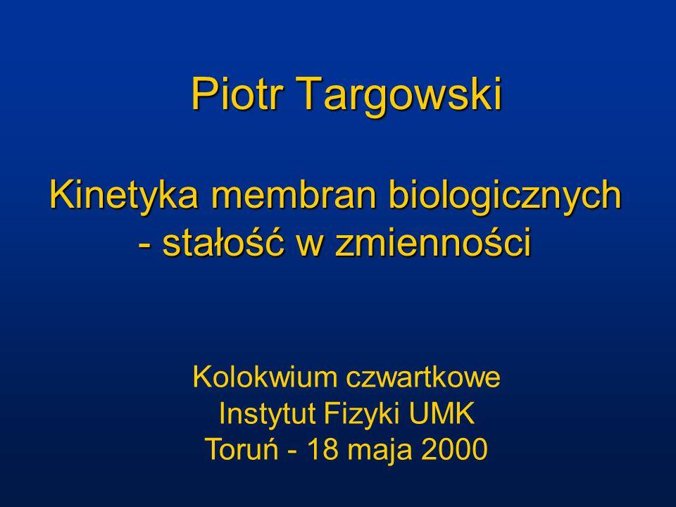 Zespół zaangażowany w badania prof.dr Lesley Davenport dr Piotr Targowski (dr) Salvatore H.