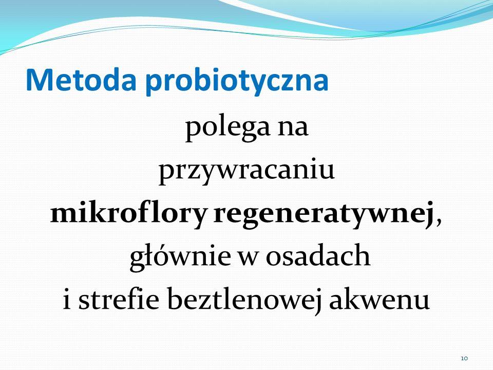 Metoda probiotyczna polega na przywracaniu mikroflory regeneratywnej, głównie w osadach i strefie beztlenowej akwenu 10