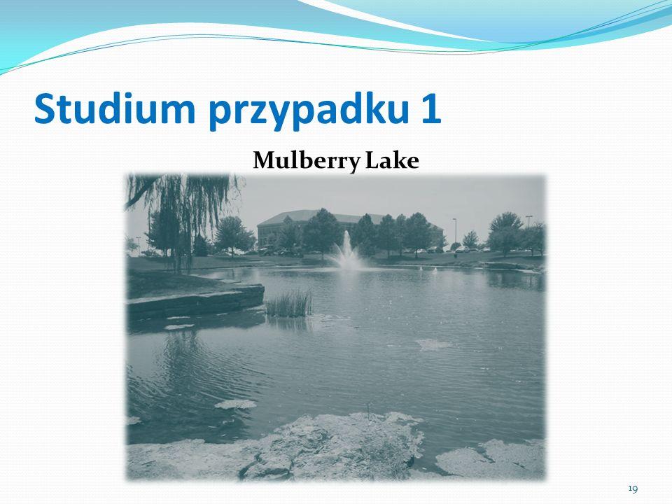 Studium przypadku 1 Mulberry Lake 19