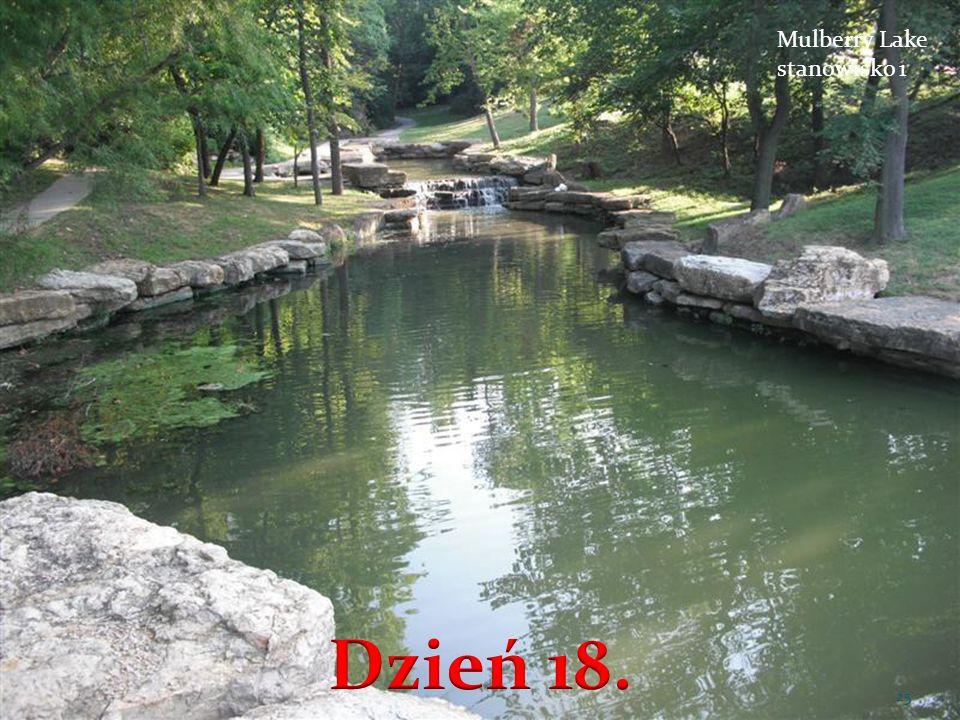 Mulberry Lake stanowisko 1 25