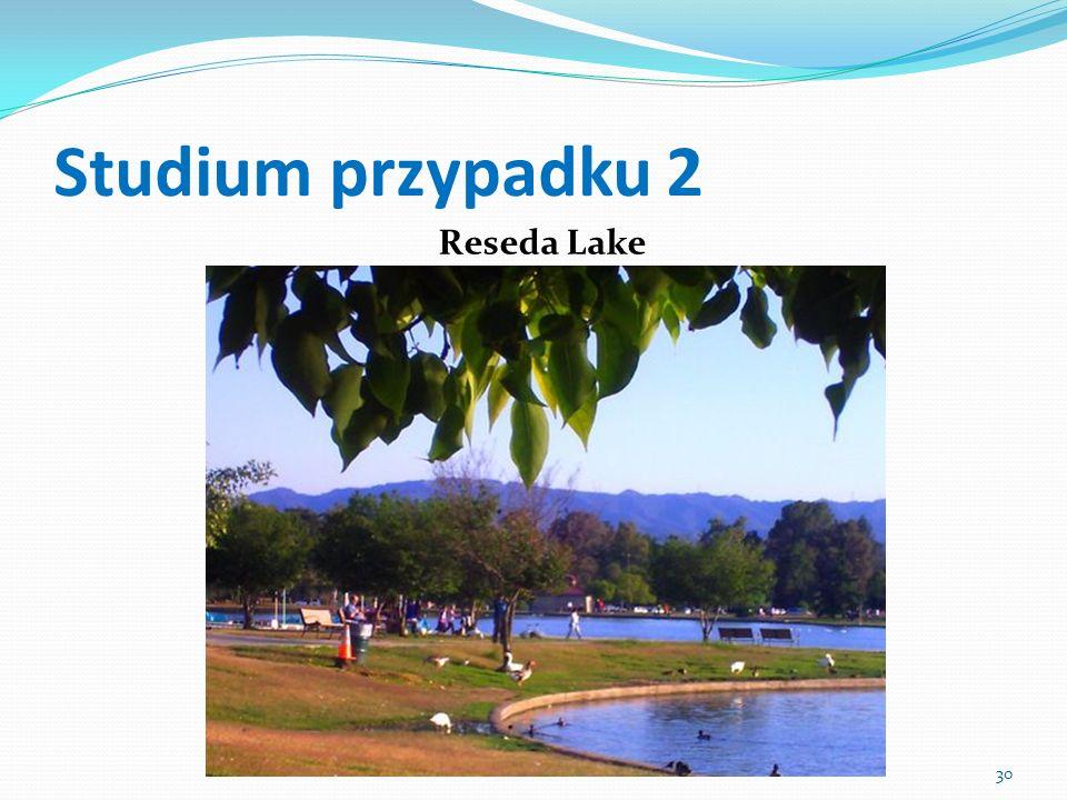 Studium przypadku 2 Reseda Lake 30