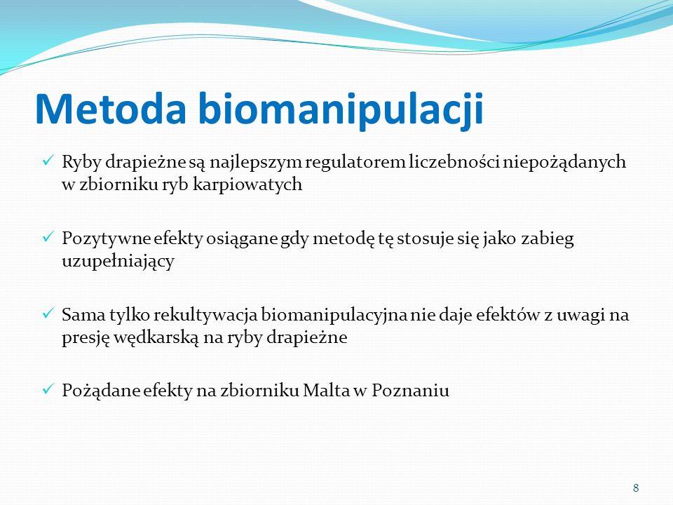 Metoda biomanipulacji Ryby drapieżne są najlepszym regulatorem liczebności niepożądanych w zbiorniku ryb karpiowatych Pozytywne efekty osiągane gdy me