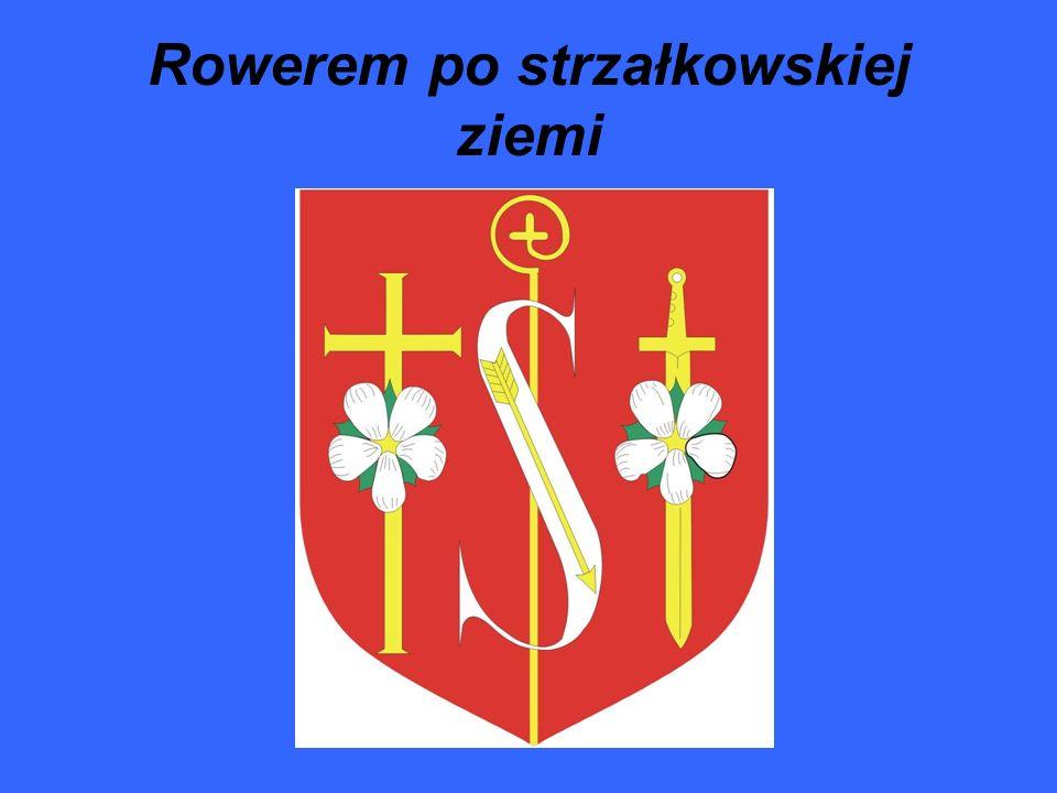 Gmina Strzałkowo