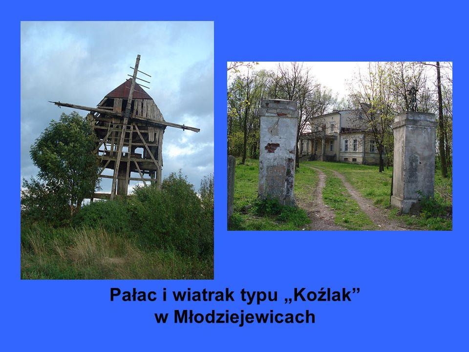 Pałac i wiatrak typu Koźlak w Młodziejewicach