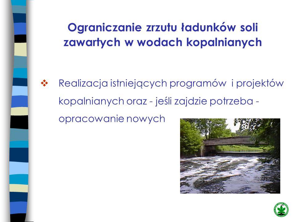 Ograniczanie zrzutu ładunków soli zawartych w wodach kopalnianych Realizacja istniejących programów i projektów kopalnianych oraz - jeśli zajdzie potr