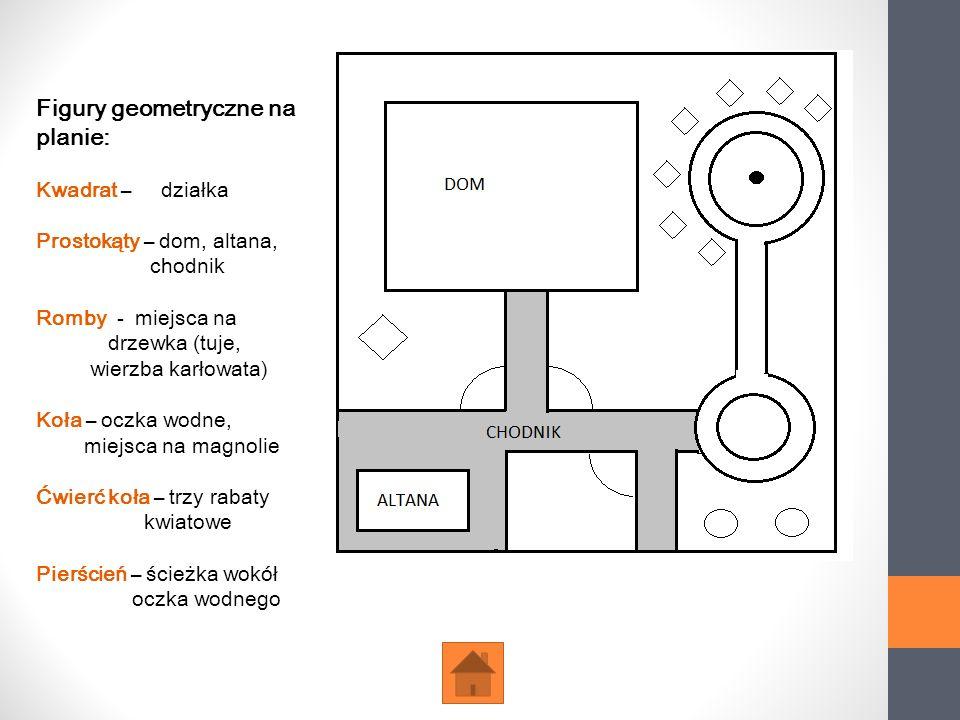 Figury geometryczne na planie: Kwadrat – działka Prostokąty – dom, altana, chodnik Romby - miejsca na drzewka (tuje, wierzba karłowata) Koła – oczka w