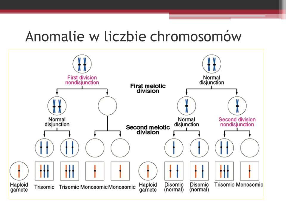 Sprzężone z chromosomem X Daltonizm - najczęściej polega na nierozróżnianiu koloru zielonego i czerwonego.