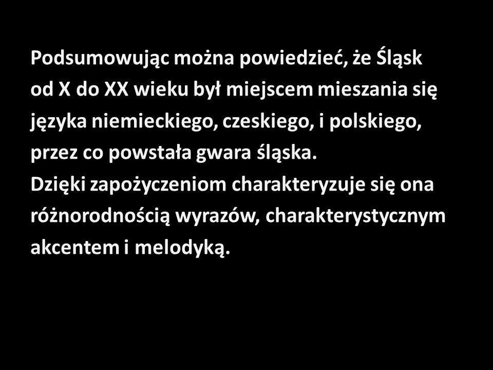 Podsumowując można powiedzieć, że Śląsk od X do XX wieku był miejscem mieszania się języka niemieckiego, czeskiego, i polskiego, przez co powstała gwa