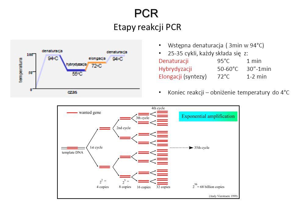 PCR Etapy reakcji PCR Wstępna denaturacja ( 3min w 94°C) 25-35 cykli, każdy składa się z: Denaturacji95°C1 min Hybrydyzacji50-60°C30-1min Elongacji (s