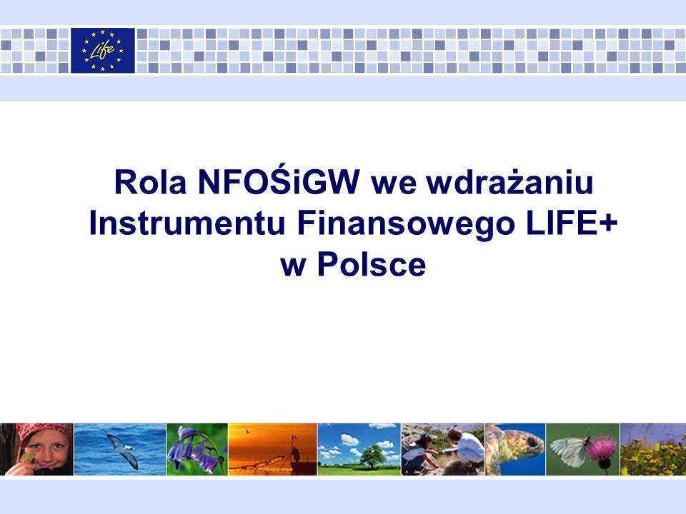 Schemat Prezentacji Zadania NFOŚiGW jako Krajowej Instytucji Wdrażającej wynikające z Porozumienia MŚ – NFOŚiGW z dnia 5 września 2008 roku.
