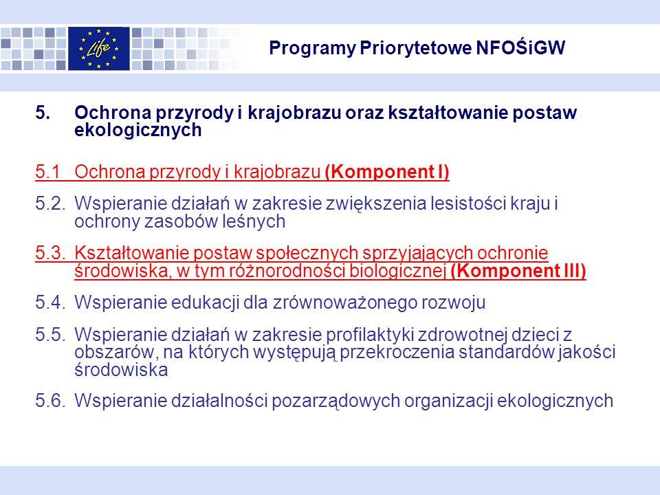 Wdrożenie Programu priorytetowego współfinansowania przedsięwzięć Instrumentu Finansowego LIFE+; Prowadzenie profesjonalnej strony internetowej zawierającej m.