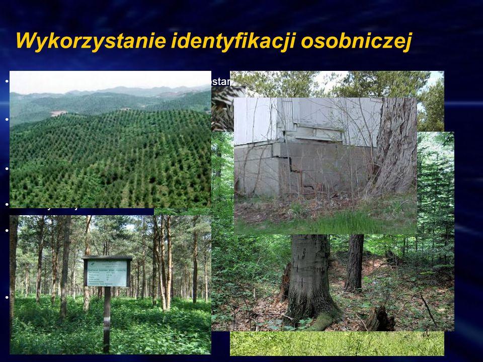 Analiza zmienności genetycznej drzewostanów, plantacji nasiennych i nasion, oraz ich przydatności w programach hodowli drzew. Genetyczna weryfikacja p