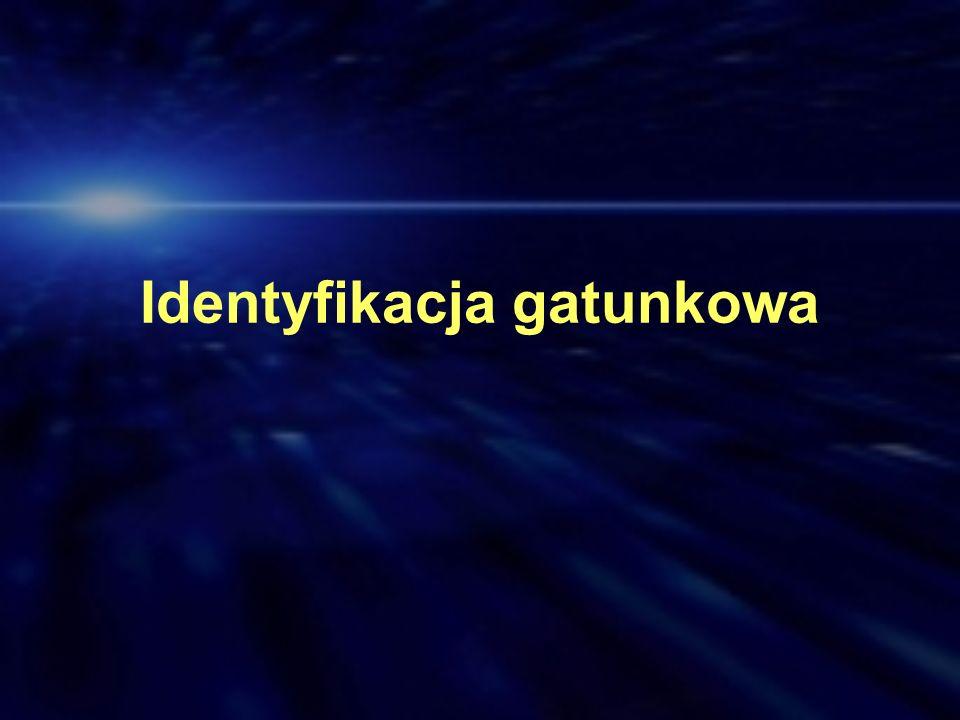 Identyfikacja gatunkowa