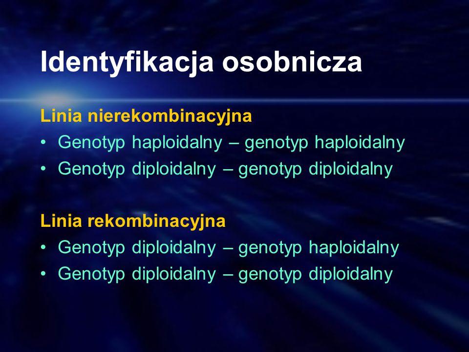 Identyfikacja osobnicza Linia nierekombinacyjna Genotyp haploidalny – genotyp haploidalny Genotyp diploidalny – genotyp diploidalny Linia rekombinacyj